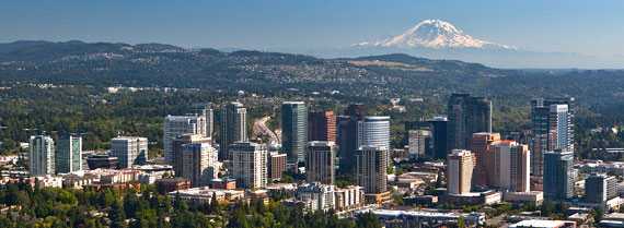 IT Support Bellevue WA
